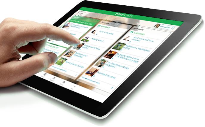 iPad view of Puppy School app